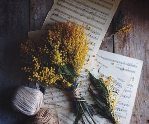 autumn, flowers, and yellow image