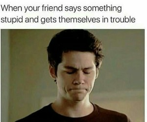 funny, meme, and teen wolf image