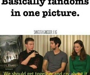 fandom and the maze runner image