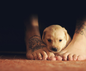 baby, feet, and hipster image