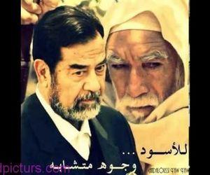 صدام and saddam hussin image