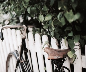 vintage, nature, and bicycle image