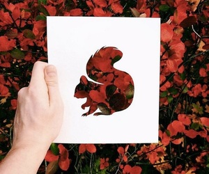 squirrel, red, and art image