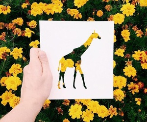 flowers, giraffe, and art image