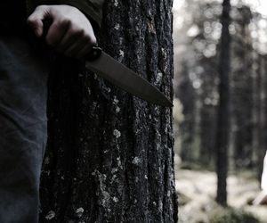 knife and murder image