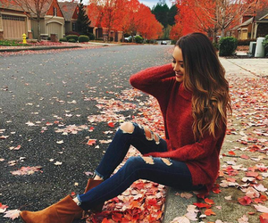 autumn, fall, and beauty image