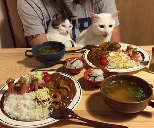 chinese food, japanese food, and korean food image