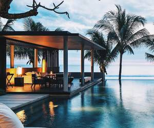 luxury, tropical, and chasing shadows image