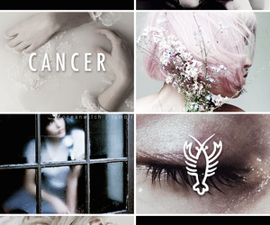 aesthetic and cancer image