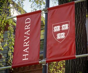 harvard, university, and bucket list image