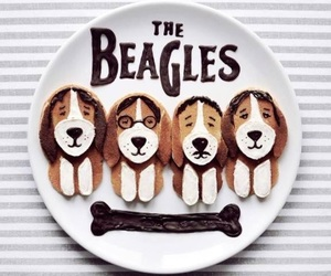 beagles, cool, and dogs image