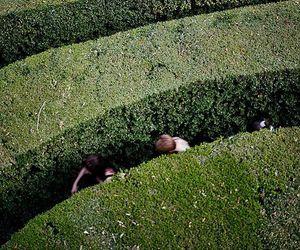 maze, aesthetic, and garden image