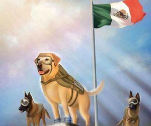 mexico. image