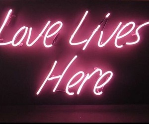 neon, love, and pink image