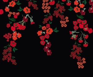 wallpaper, flowers, and red image