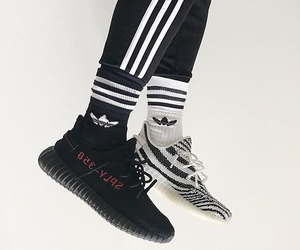adidas, beast, and black and white image