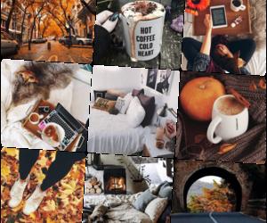 autumn, fall, and inspo image