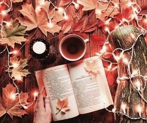 autumn, beautiful, and book image
