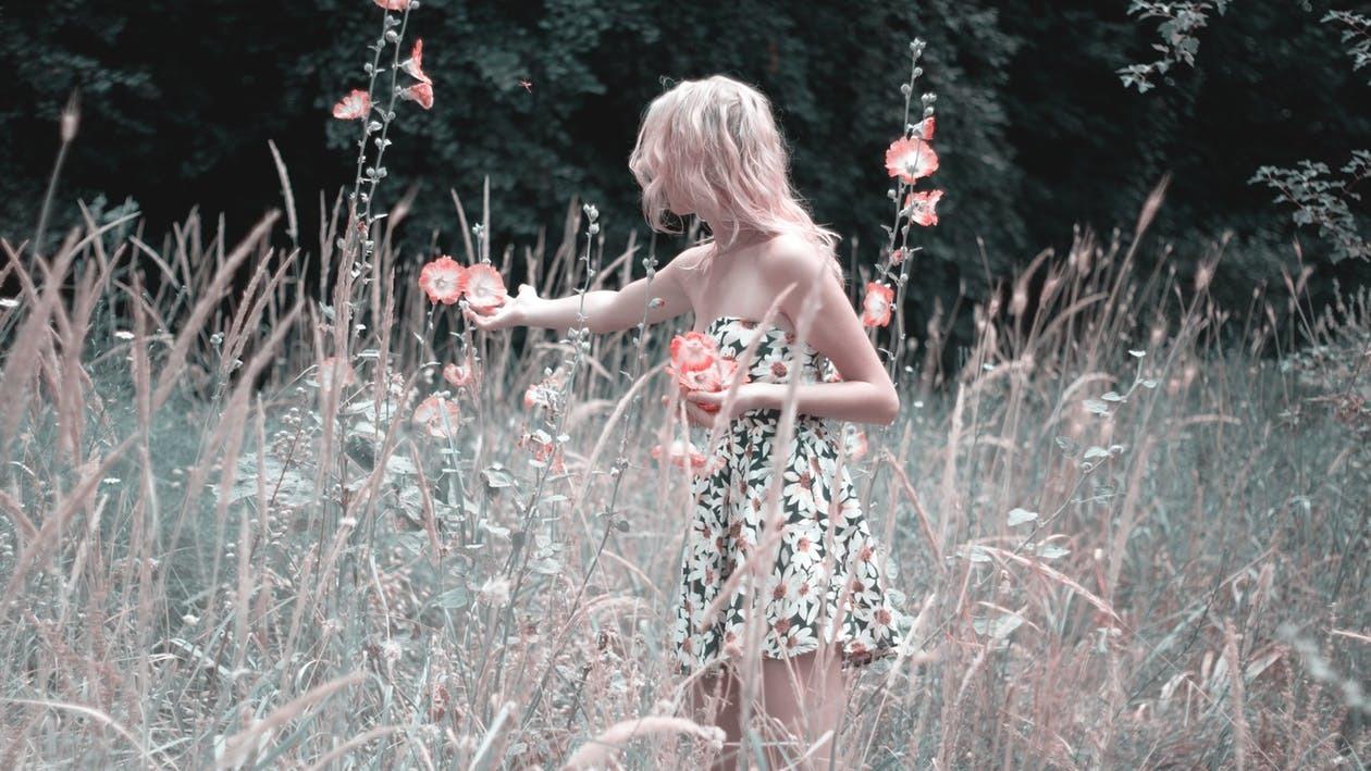 aesthetic, moodboard, and poetic image