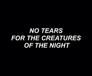 creatures, night, and quotes image