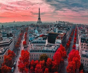 paris, red, and city image
