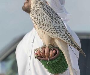 arab, clothes, and Dubai image