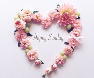 flowers, pink, and Sunday image
