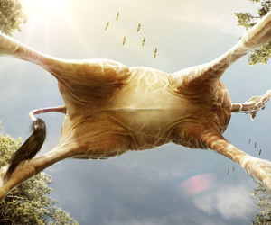 giraffe undercarriage ! image
