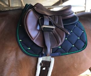 detail, follow, and saddle image