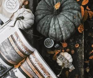 autumn, cozy autumn, and autumn leaves image