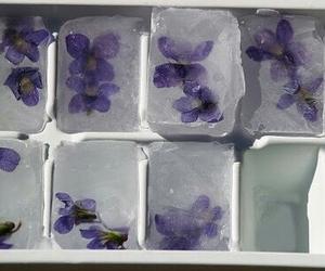 flowers, ice, and purple image
