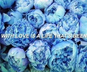 aesthetic, blue, and supermarket flowers image