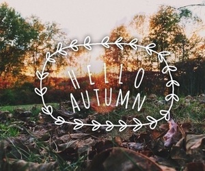 autumn, days, and fall image