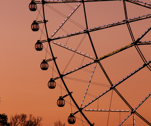 sunset, photography, and ferris wheel image