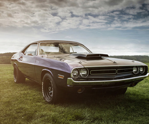 cars, muscle car, and wallpaper image