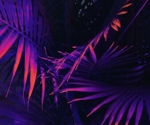 purple, wallpaper, and aesthetic image