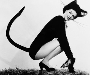 cat, vintage, and black and white image
