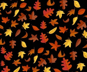 autumn, colors, and facebook image