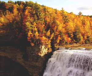 autumn, waterfall, and fall image