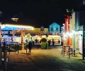 amusement park, night, and scary image
