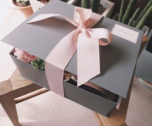 box, flowers, and cosy image