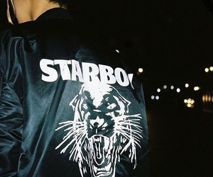 the weeknd, starboy, and theme image