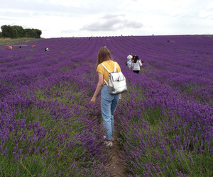 flowers, purple, and girl image
