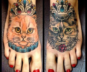 cat, cats, and crown image
