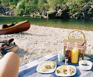 picnic, food, and summer image