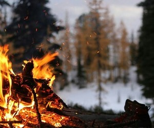 fire, nature, and cold weather image