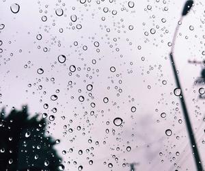 rain and purple image