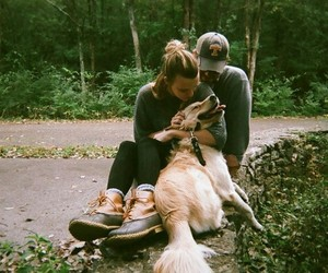 travel, dog's, and love image