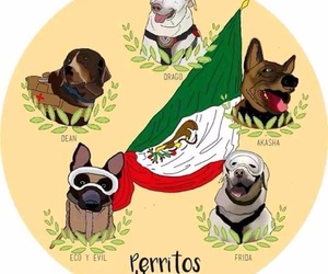 mexico, fuerza mexico, and heroes image