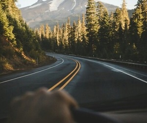 drive, nature, and road image